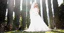 Napa Wedding Video